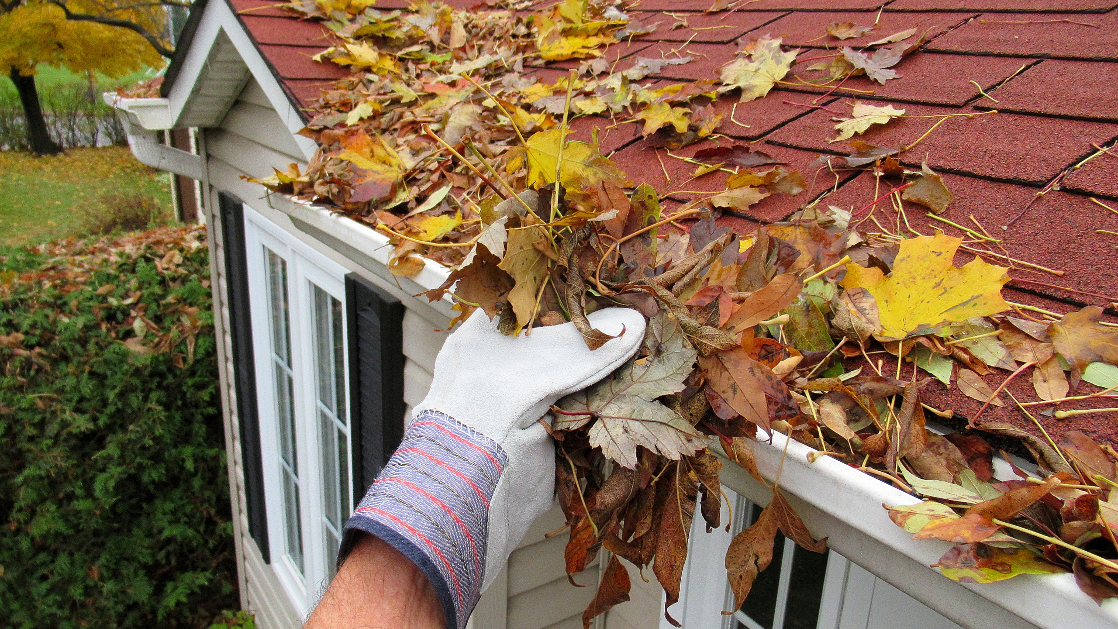 DIY gutter cleaning services