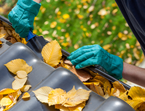 Gutter Cleaning Services – An Ultimate Guide to Gutter Cleaning in the Hamptons